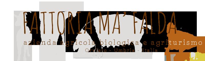 logo.2